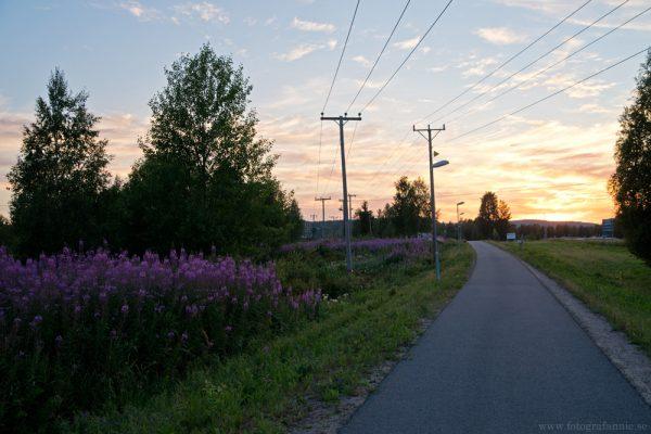 Cykelutflykt i Övertorneå