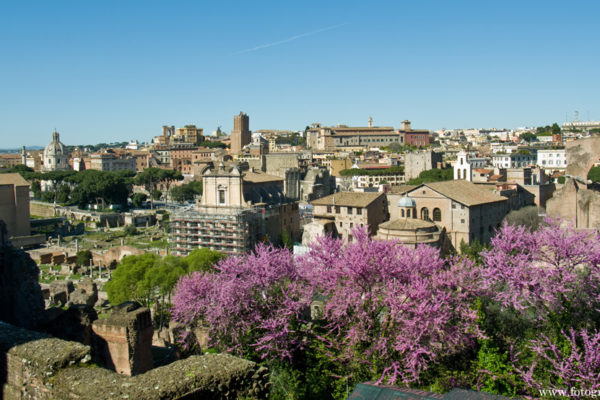 Vårig långhelg i Rom