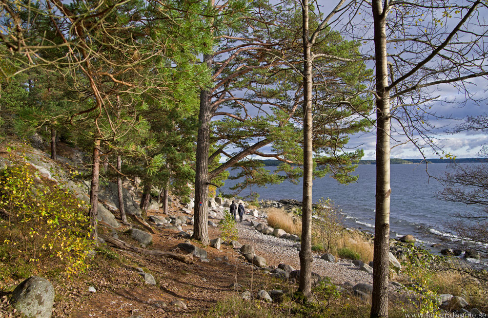 Lunchutflykt på Gålö