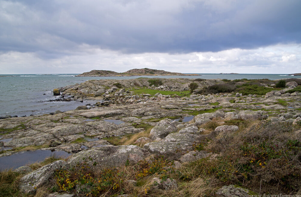 Halländskt kustlandskap