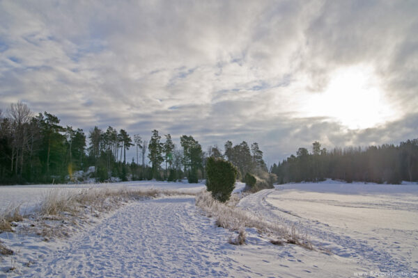 Snö vid Häringe