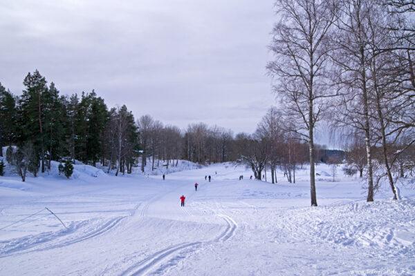 Åka längdskidor
